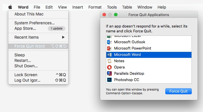 force quit Word on Mac