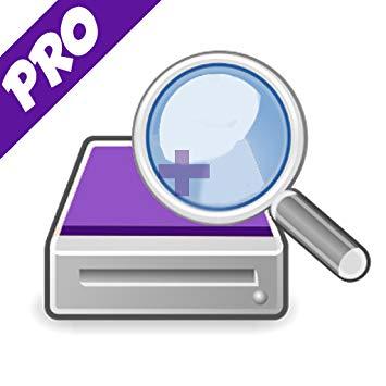 diskdigger pro logo