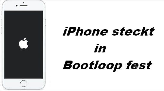 iphone steckt in Bootloop fest