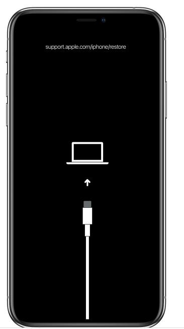 mit Computer verbinden Bildschirm