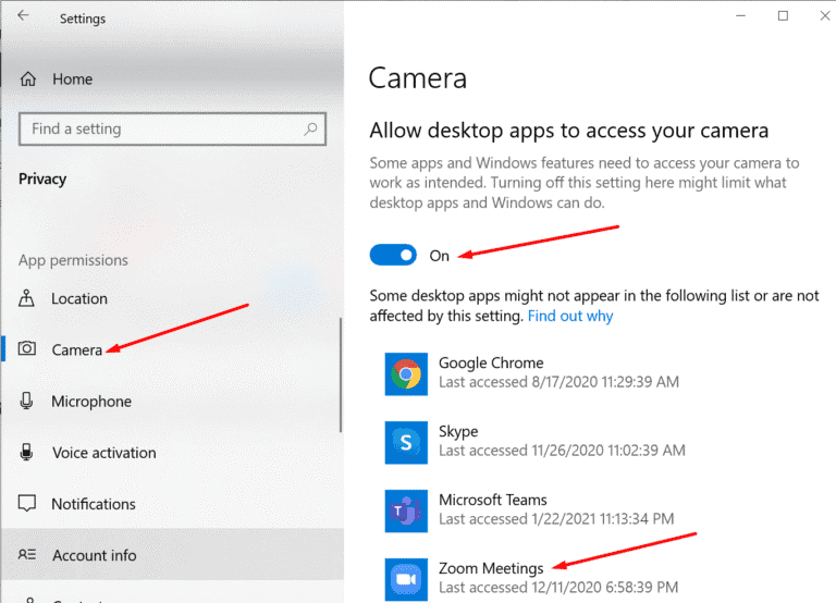 allow zoom to access your camera
