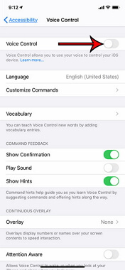 turn on voice control iPhone