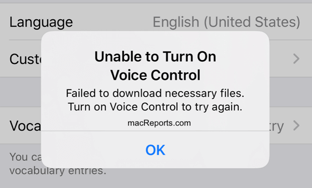voice control not working