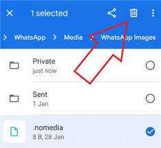 delete .nomedia file