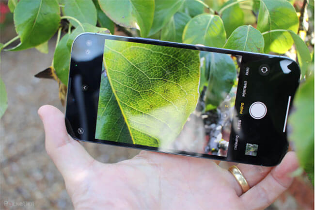 take macro photos and videos on iPhone