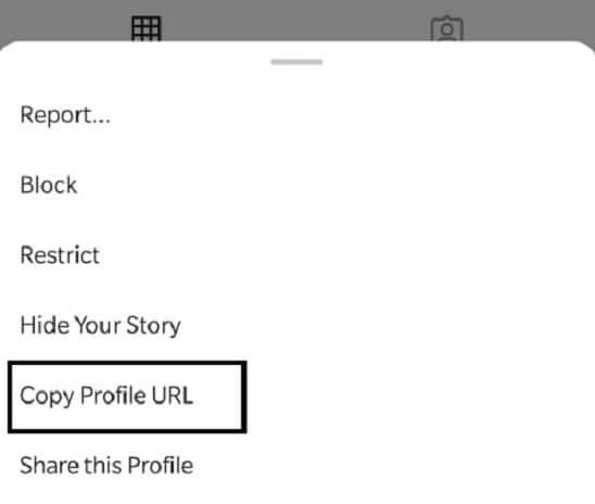 instagram profile settings copy url