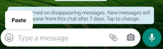 whatsapp paste link