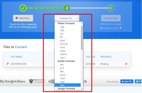 choose convert format on zamzar