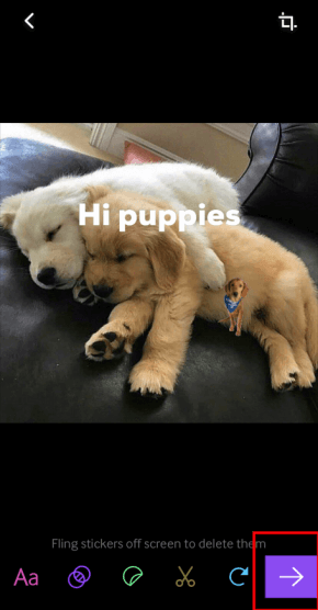 click right arrow on giphy