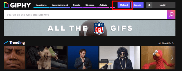 giphy interface