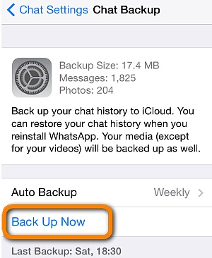 backup whatsapp messages now