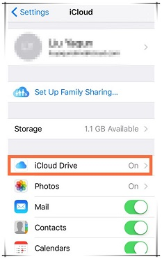 Make sure that the iCloud drive is ON