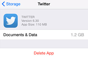 twitter cache on iPhone