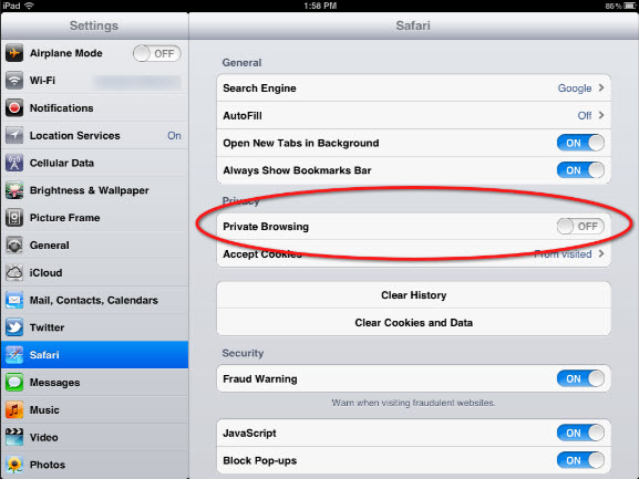 ipad Private Browsing