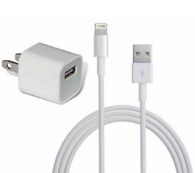 iPhone Charger and USB Cable
