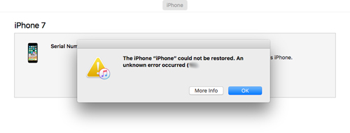 iPhone could not be restored error