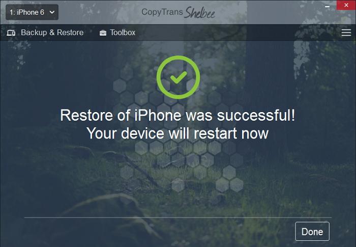 cts-restore-succesful