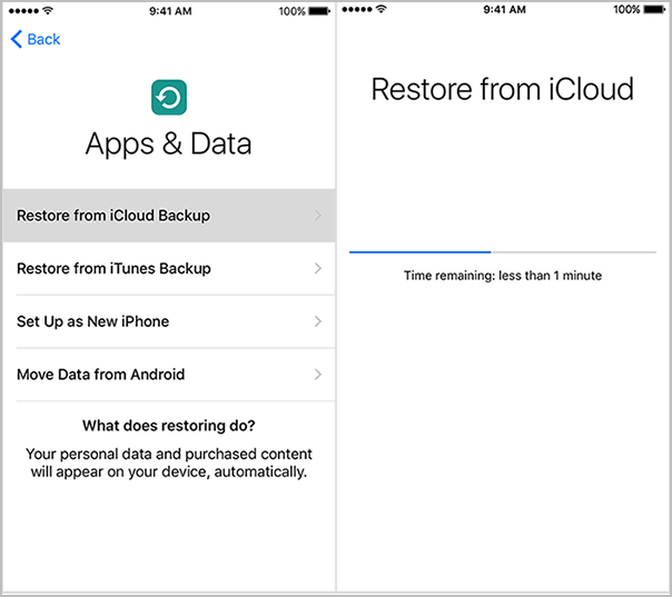 Restore-from-iCloud