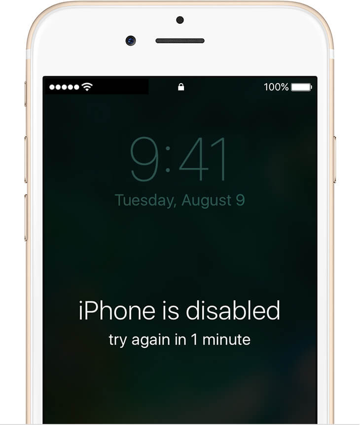 iphone disabled