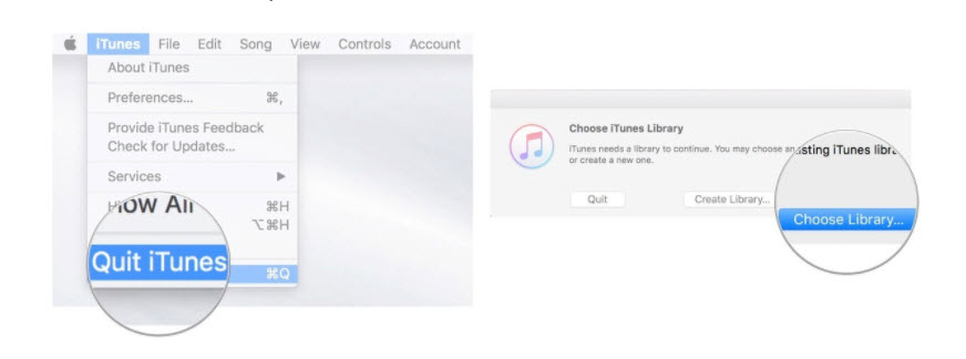 switch between iTunes libraries