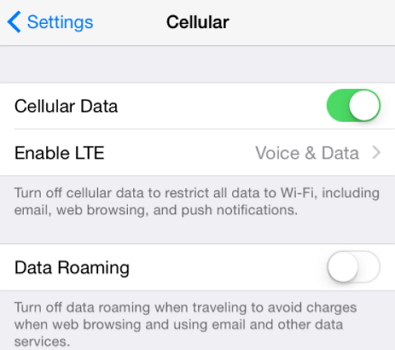 Turn on Cellular/Mobile Data from App Store