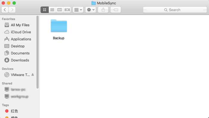 iTunes backup folder