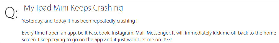 iPad mini keeps crashing case