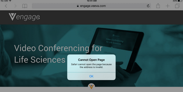 safari cannot open page address invalid