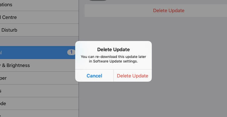 delete ios update