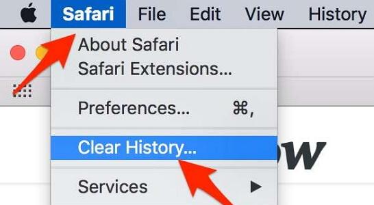 clear safari history