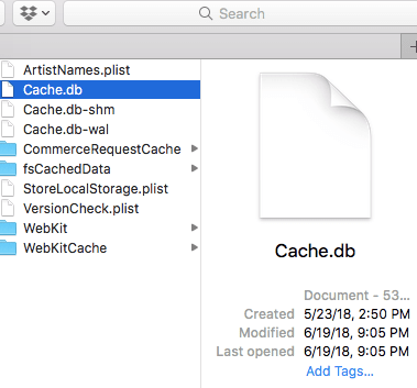 browser cache mac
