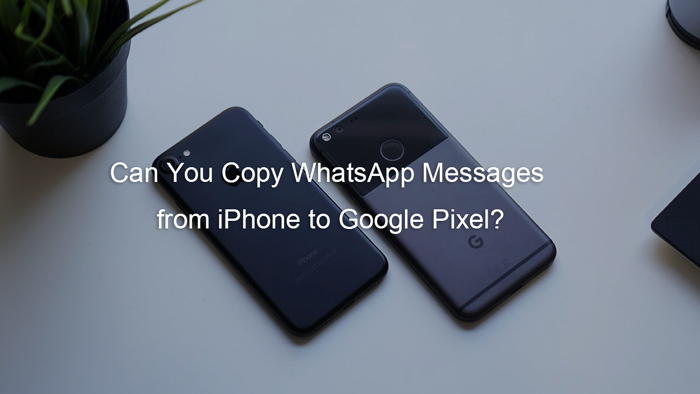 copy-whatsapp-messages-from-iphone-to-google-pixel