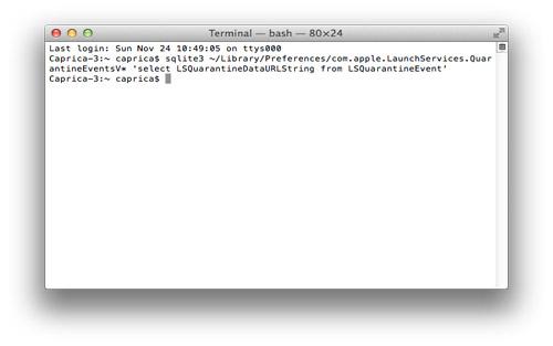 delete download history terminal