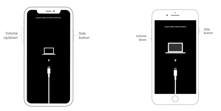 Erase locked iPhone through recovery mode