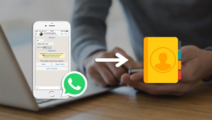 export whatsapp contacts
