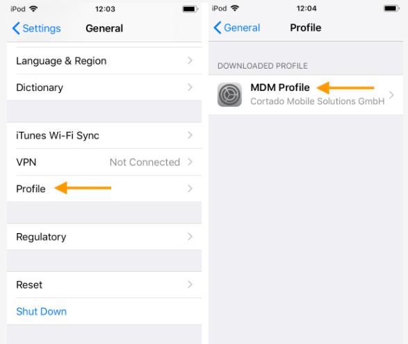 MDM profile
