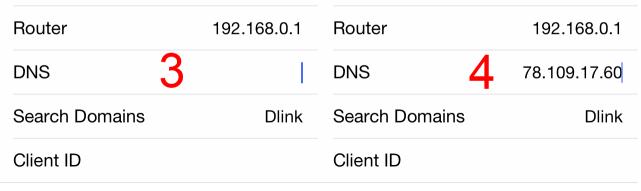 DNS address