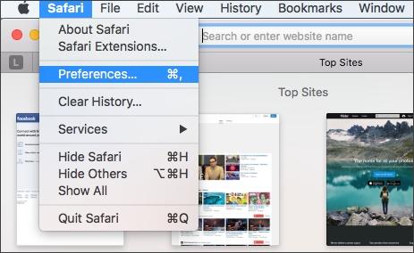 choose preferences on Safari