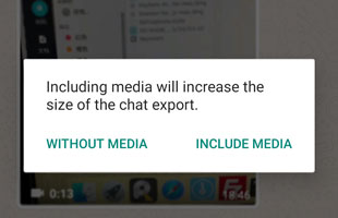 export with media or without media