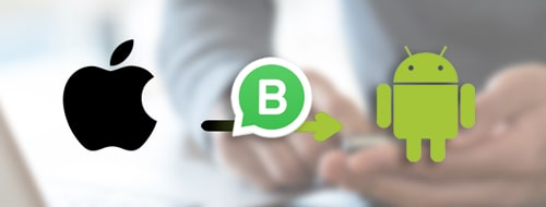 transfer whatsapp business from iphone to android