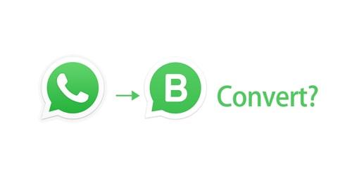 whatsapp to whatsapp business convert