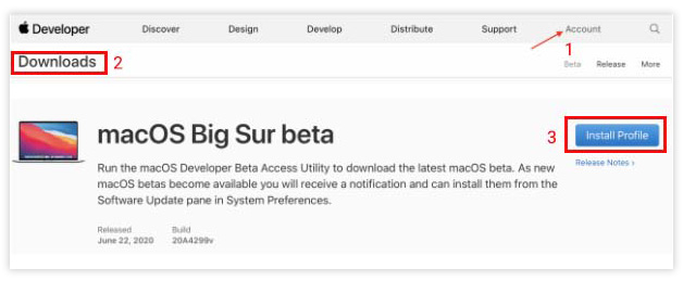download big sur installer package