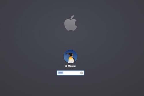 enter password on mac