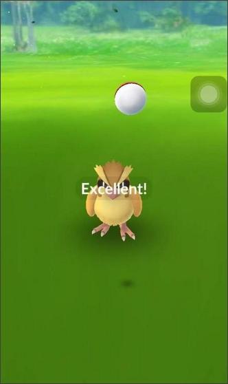 excellent throw in pokemon go