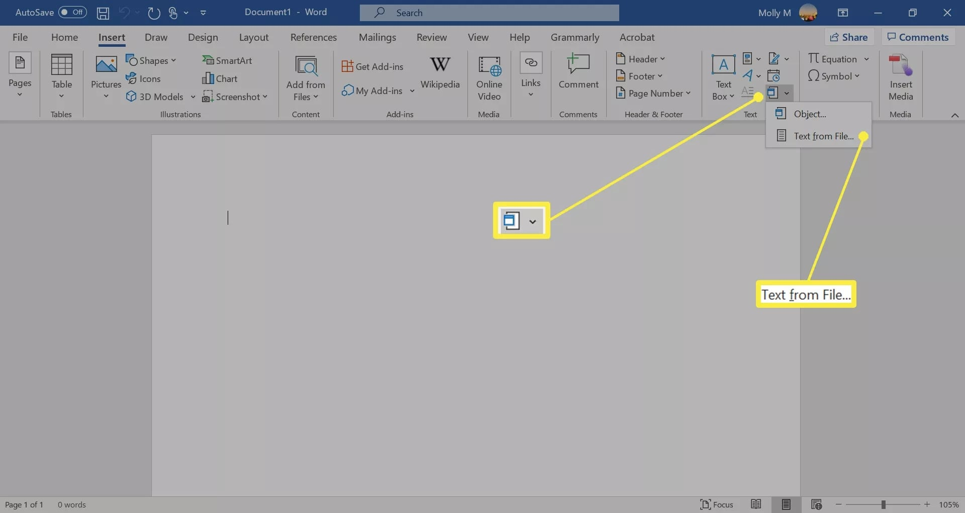microsoft word insert from file