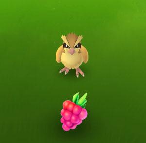 Use RazzBerries to catch regionals
