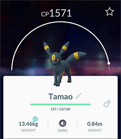 Tamao