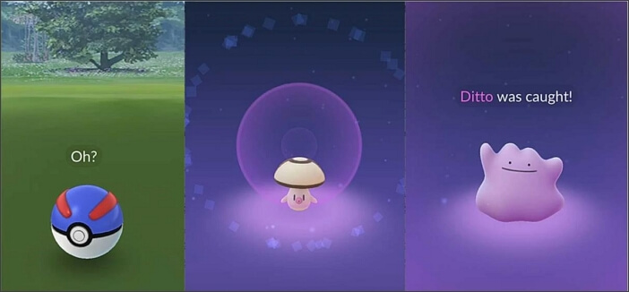 catch a ditto