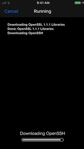 Downloading OpenSSH