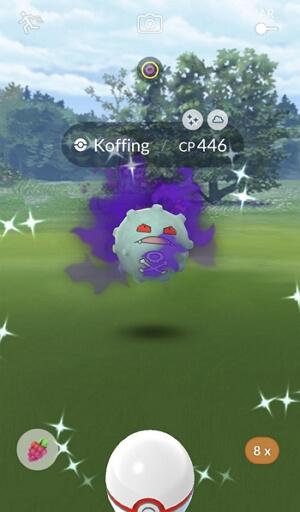 shiny shadow Pokemon
